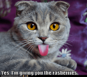 Yes, I'm giving you the rasberries
