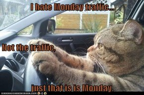 I hate Monday traffic... Not the traffic, just that is is Monday.