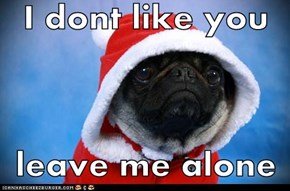 I dont like you  leave me alone