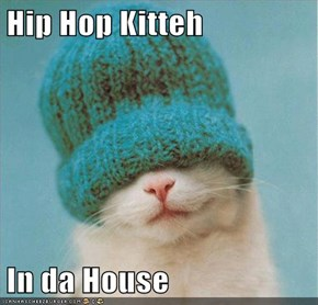 Hip Hop Kitteh  In da House