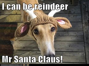 I can be reindeer   Mr Santa Claus!