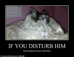 IF YOU DISTURB HIM