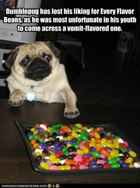 Dumblepug has lost his liking for Every Flavor Beans, as he was most unfortunate in his youth to come across a vomit-flavored one.