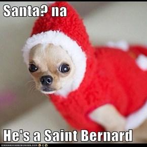 Santa? na  He's a Saint Bernard