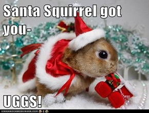 Santa Squirrel got you-  UGGS!