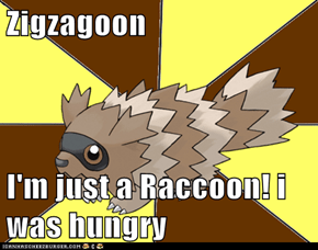 Zigzagoon  I'm just a Raccoon! i was hungry