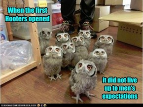 So It's Just Owls Then?