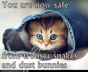 You are now safe  from trouser snakes and dust bunnies