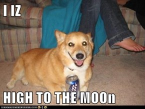 I IZ   HIGH TO THE MOOn