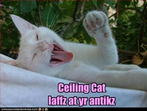 Ceiling Cat  laffz at yr antikz