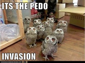 ITS THE PEDO  INVASION