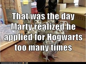 That was the day Marty realized he applied for Hogwarts too many times
