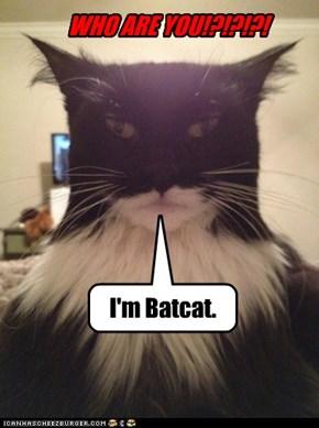 I'm Batcat.