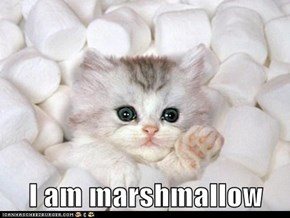 I am marshmallow