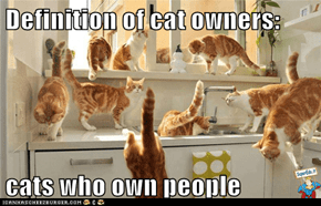 Definition of cat owners:  cats who own people