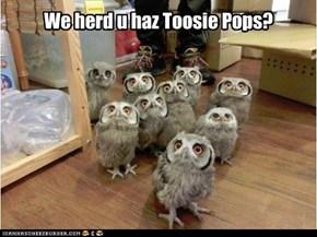 We herd u haz Toosie Pops?