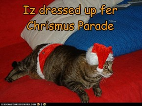 Iz dressed up fer Chrismus Parade