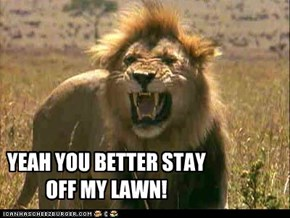 YEAH YOU BETTER STAY OFF MY LAWN!