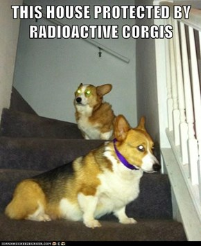 THIS HOUSE PROTECTED BY RADIOACTIVE CORGIS