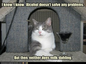 I know, I know.  Alcohol doesn't solve any problems.