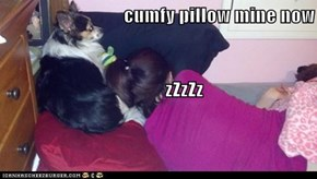 cumfy pillow mine now              zZzZz