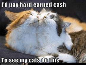 I'd pay hard earned cash  To see my cats do this