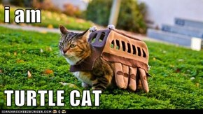 i am  TURTLE CAT