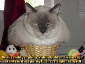 He wus chubby en plump, a rite jolly old elf.. turned a light on and saw it was just my kitteh so I laughed at myself