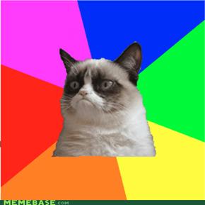 Grumpy Cat as a meme