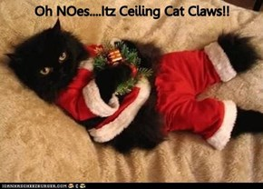 Oh NOes....Itz Ceiling Cat Claws!!