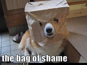 the bag of shame