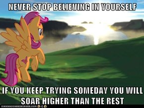 NEVER STOP BELIEVING IN YOURSELF  IF YOU KEEP TRYING SOMEDAY YOU WILL SOAR HIGHER THAN THE REST