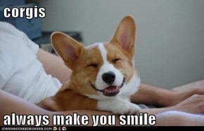 corgis  always make you smile