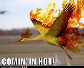 COMIN' IN HOT!