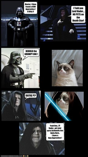 A GRUMPY SITH, you WILL BECOME!