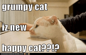 grumpy cat iz new happy cat??!?