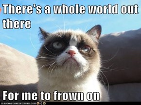 There's a whole world out there  For me to frown on