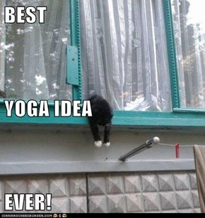 BEST YOGA IDEA EVER!