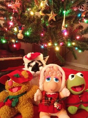 The 25 Days of Catmas: Christmas With the F-U-ppets