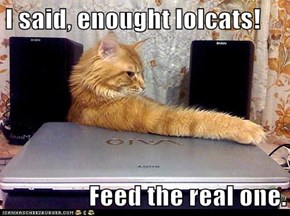 I said, enought lolcats!  Feed the real one.