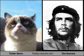Tarder Sauce Totally Looks Like Che Guevara