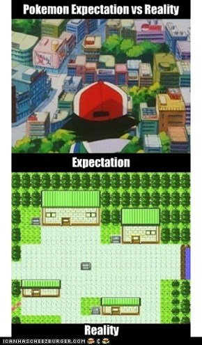Pokemon Expectation vs Reality