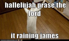 hallelujah prase the lord  it raining james