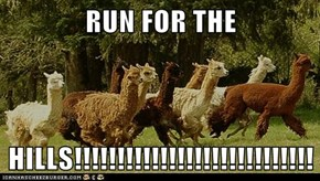 RUN FOR THE  HILLS!!!!!!!!!!!!!!!!!!!!!!!!!!!!