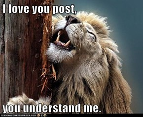 I love you post,  you understand me.