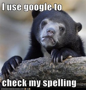 I use google to  check my spelling