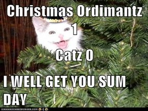 Christmas Ordimantz 1  Catz 0 I WELL GET YOU SUM DAY