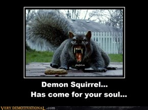 Demon Squirrel