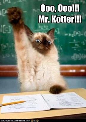 Ooo, Ooo!!! Mr. Kotter!!!