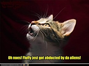 Oh noes! Fluffy jest got abducted by da aliens!